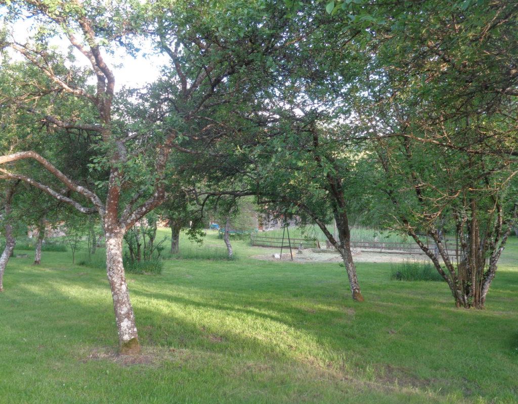 Uitzicht vanuit een van de trekkershutten op het middenveld met bbq hoek
