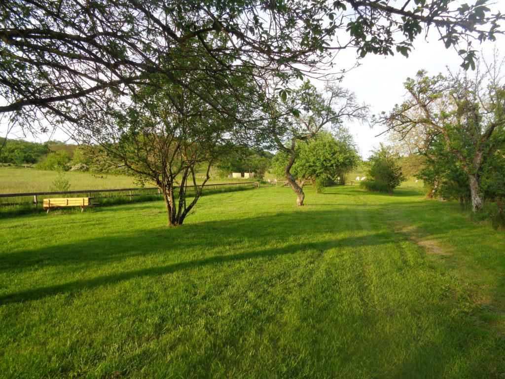 Het terrein aan de Noordkant met afrastering voor het speelveld en weiland